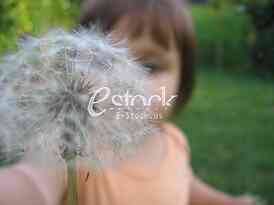 child and dandelion